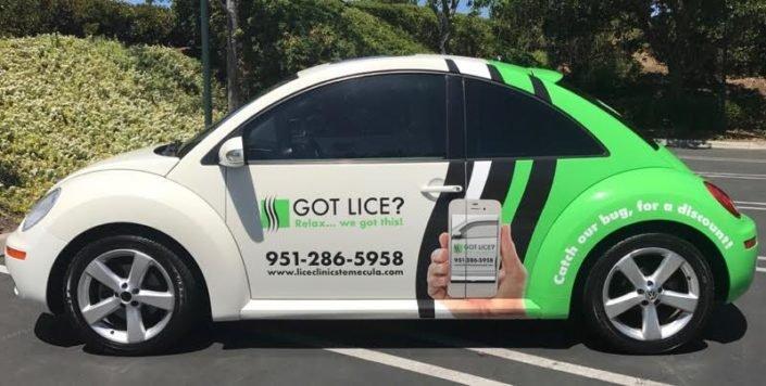 lice clinic car temecula